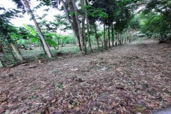 3.1 hectares Titled  Agricultural land in Alfonso Cavite